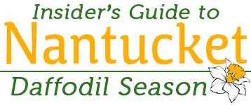 Insider's Guide to Nantucket Daffodil Season | Nantucket, MA